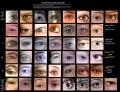 Eye Color Chart.
