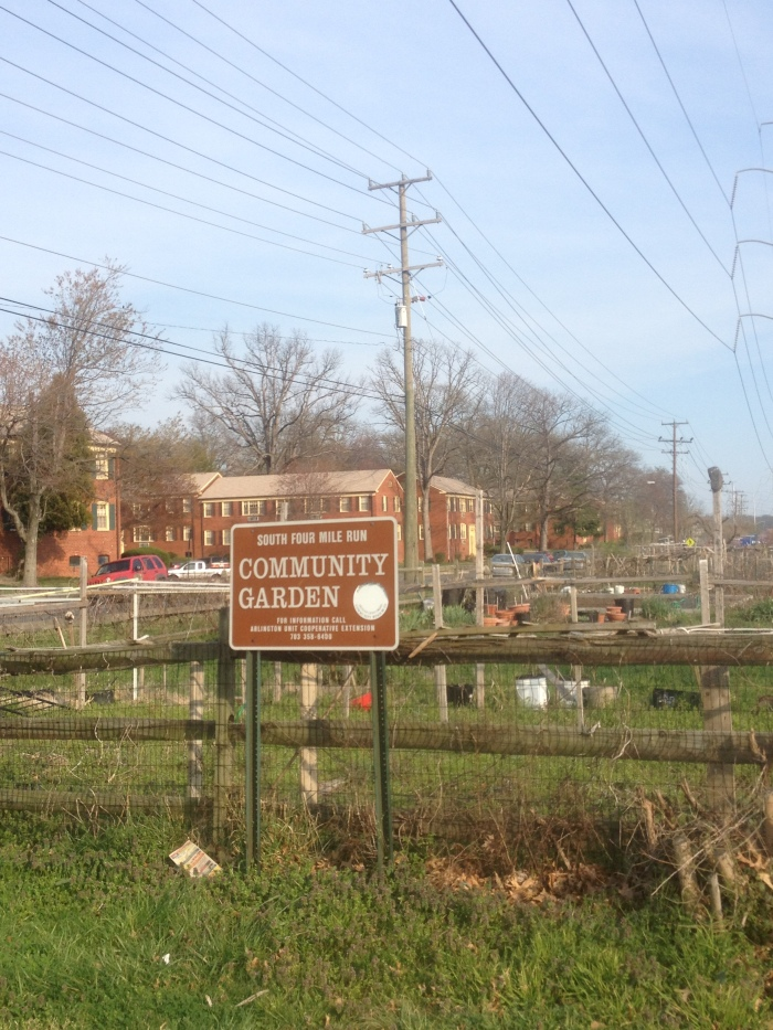 A community garden in the Shirlington neighborhood of Arlington. This one is right on the WO&D Trail near the Shirlington trailhead.