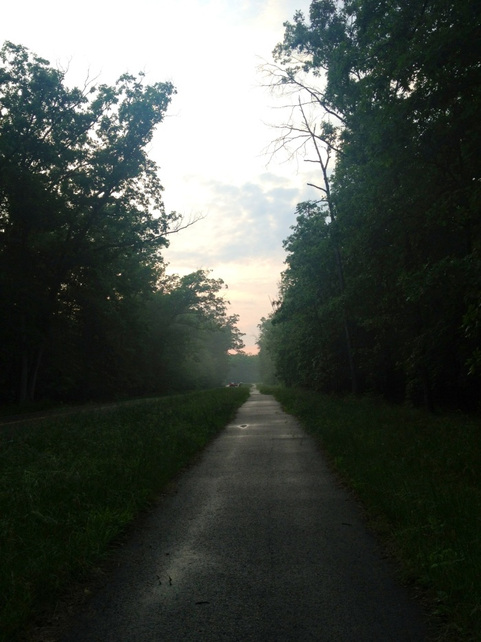 Pleasant Valley Road on a hot and steamy late spring evening.