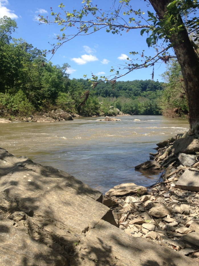 View of the Potomac River from the trail.