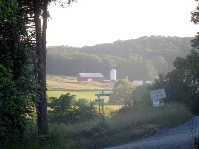 View of the mountains and a barn on my country roads walk.