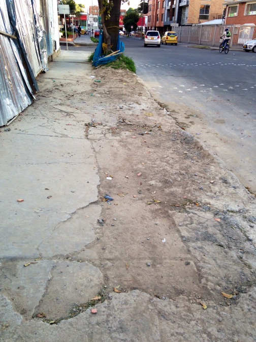 Another example of bad sidewalks.