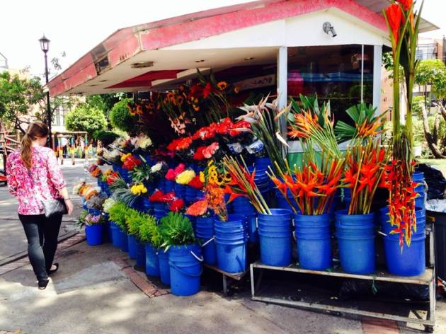 A flower stand in the Cedritos neighborhood. The Cedritos neighborhood is a mix of middle class residential streets and chaotic, loud commercial strips. This being Colombia, there are flower stands everwhere.