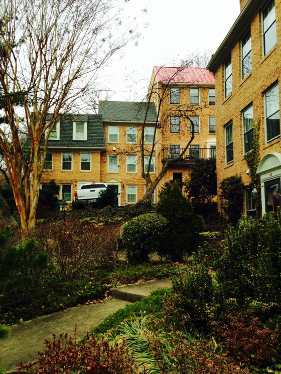 A small townhouse development on a residential Del Ray street.