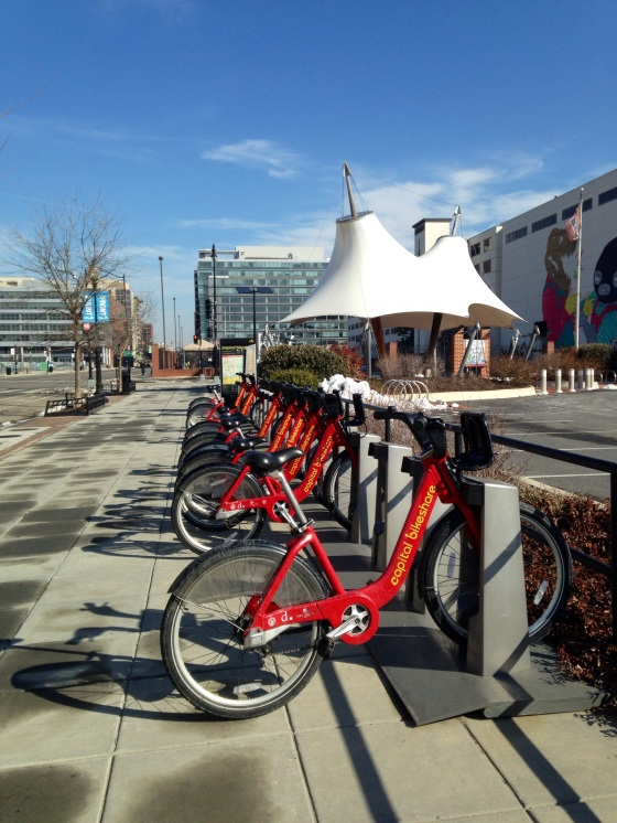 Bikes from the D.C bike share program. I was surprised to find out that it's actually pretty reasonably priced. $7 per day or $75 for a year long membership.