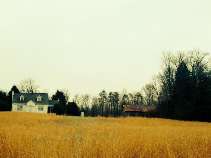 Farmland outside Fredericksburg 2