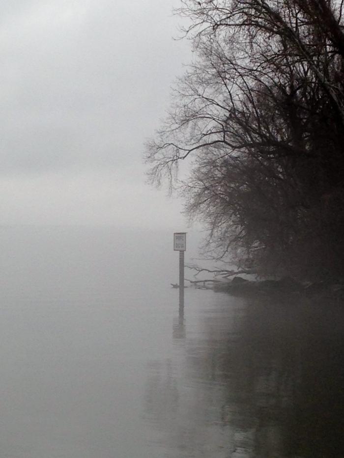Potomac 16 extreme fog