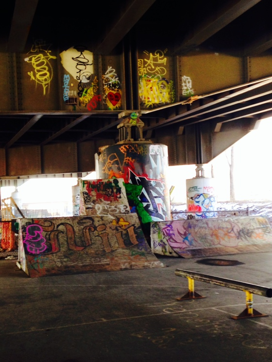 A skate park under a bridge between Navy Yard and Capitol Hill. This is next to a large park.