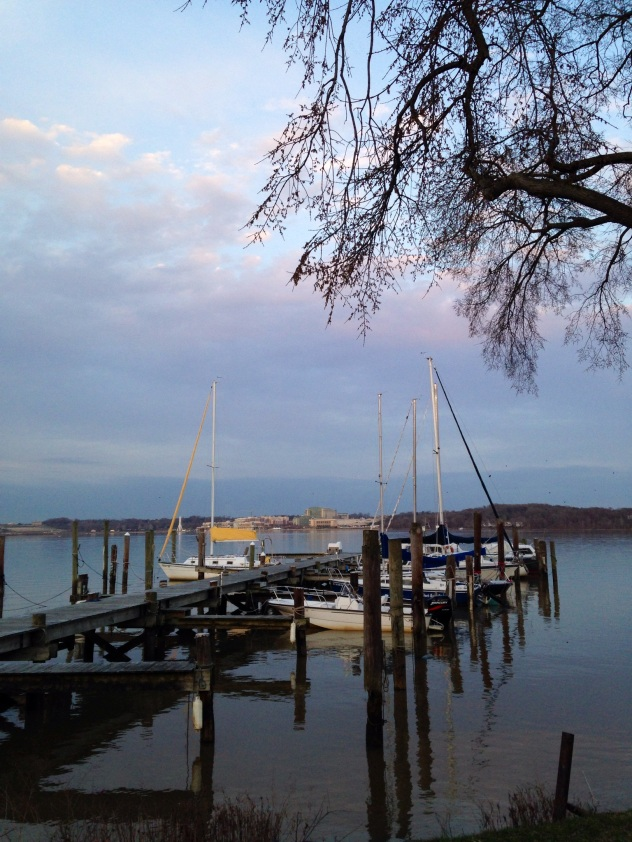 View of the Potomac from the Belle Haven Marina.