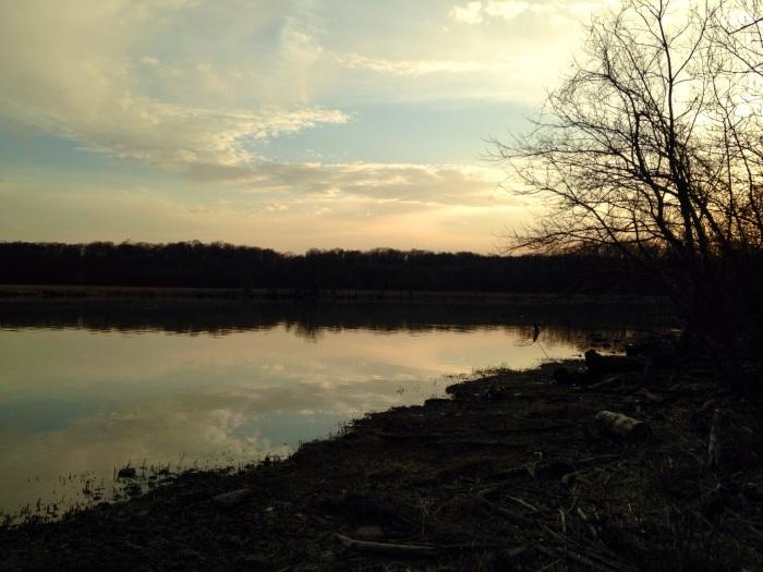 Nightfall picture of Dyke Marsh.