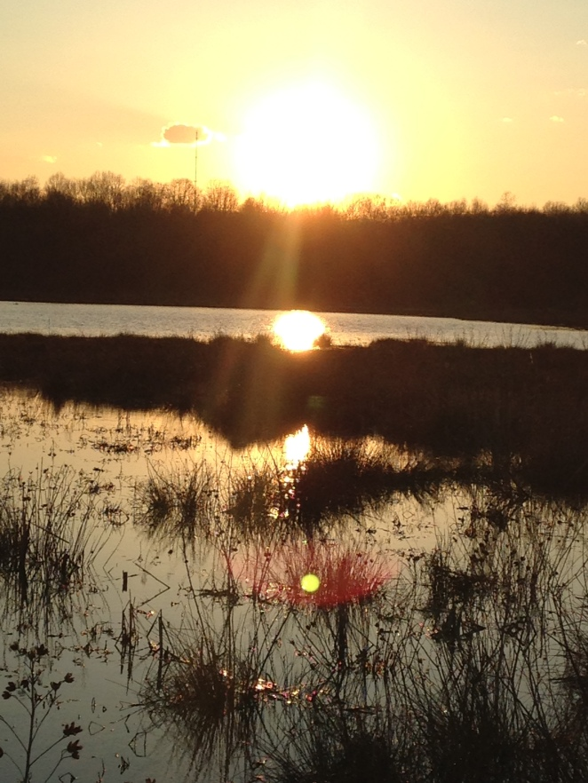 Sunset at Huntley Meadows.