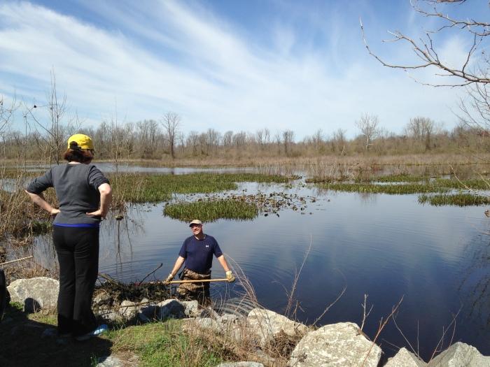 OBWR Swamp cleaner