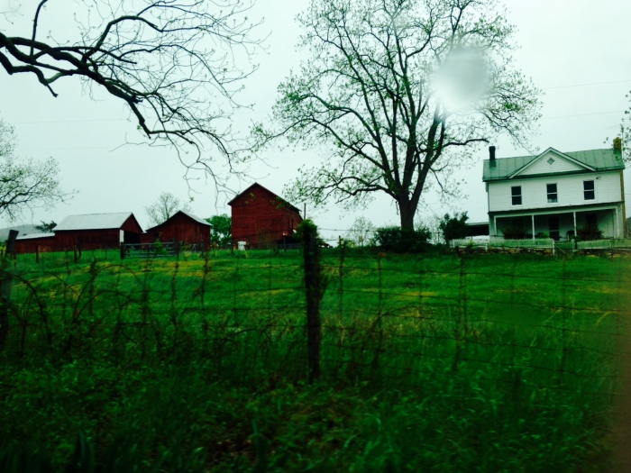 There's something a little spooky about gray and rainy afternoons in a rural, mountainous place like northwestern Virginia.