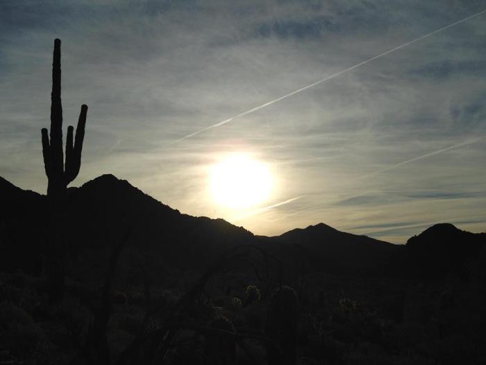 Phoenix 10 Mcdowell Preserve