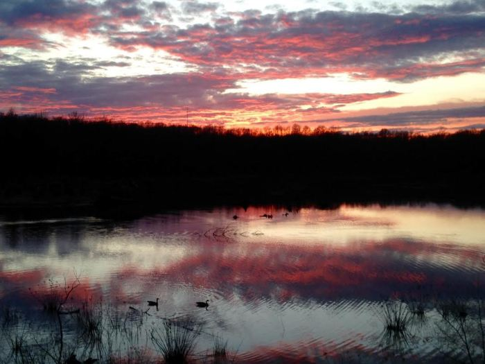 Sunset at Huntley Meadows, one of my favorite Northern Virginia parks.