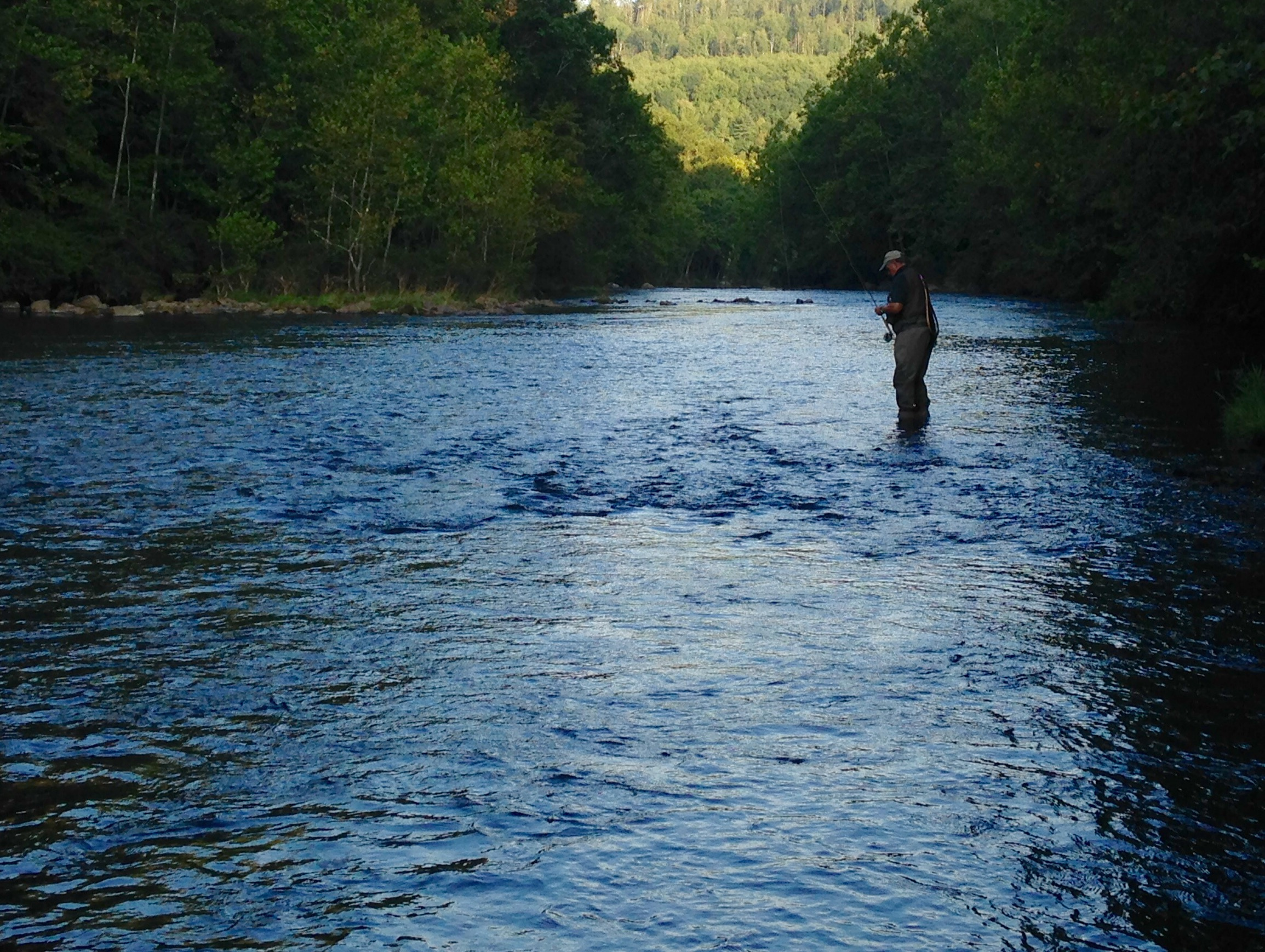 Kayaking Jackson Mi Jackson River Fishing