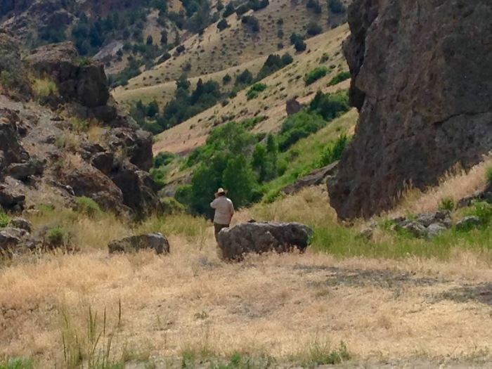 Montana Cowboy.jpg
