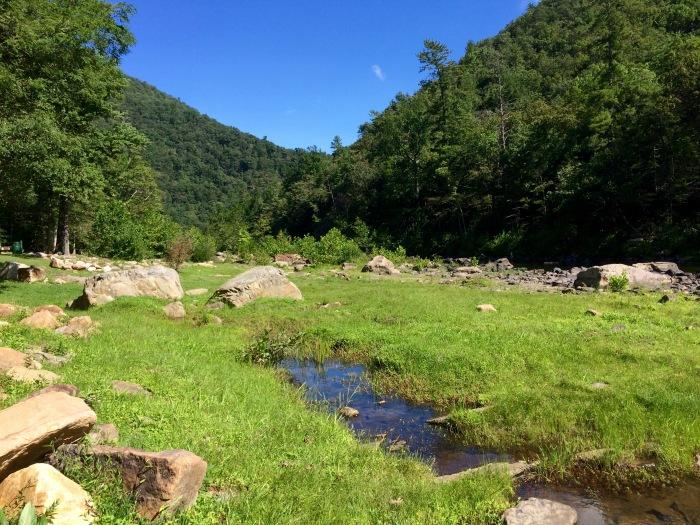 maury-puddle