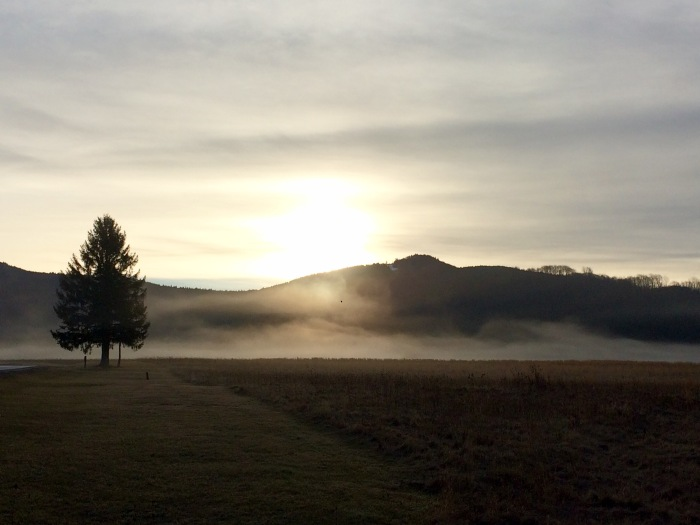 wv-morning-fog-canaan