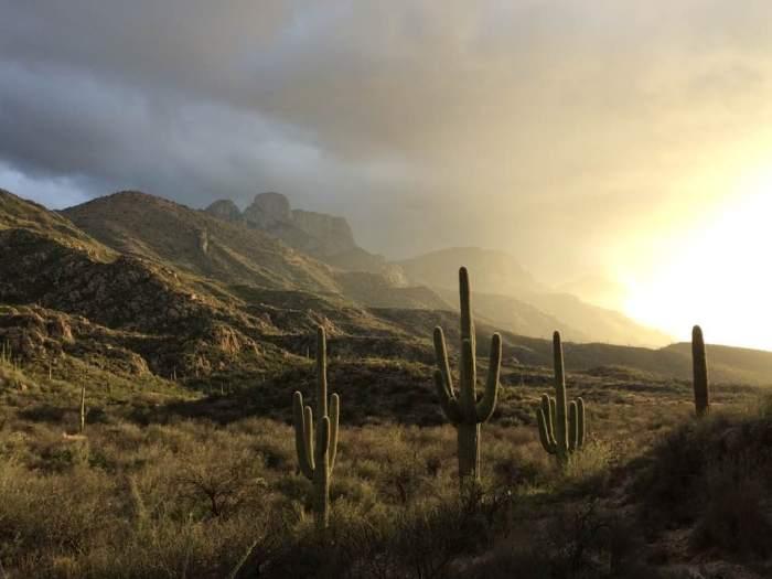 arizona-catalina-state-park-land-before-times