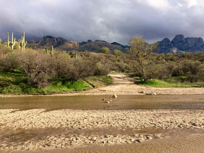 arizona-catalina-state-park-temporary-rivers