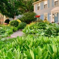 Deergate garden envy