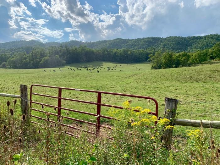 Bath County landscape