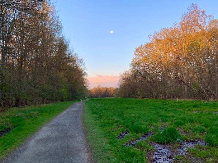 Walk Stream Valley Marsh and Moon
